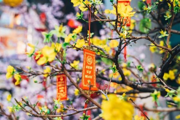 Новый 2020 год во Вьетнаме: когда отмечают Вьетнамский Новый год