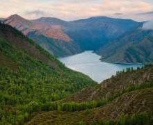 День заповедников и национальных парков России — когда и какого числа отмечают в 2020 и 2020 году