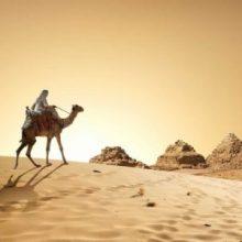 Возобновление полетов в Египет в 2020 году ожидается в России