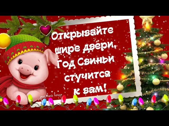 Смс поздравления с Новым годом Свиньи 2020
