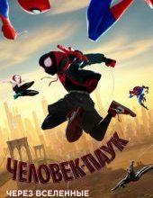 Человек-паук: Через вселенные (мультфильм 2020) смотреть онлайн бесплатно в хорошем качестве
