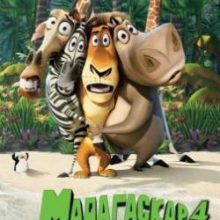 Мадагаскар 4 смотреть онлайн бесплатно мультфильм в хорошем качестве hd 720