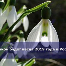 Какой будет весна 2019 года в России