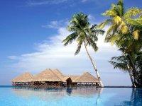 Туры на Мальдивы из Москвы — цены — купить в Тез тур