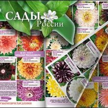 Сады России, каталог 2020 года